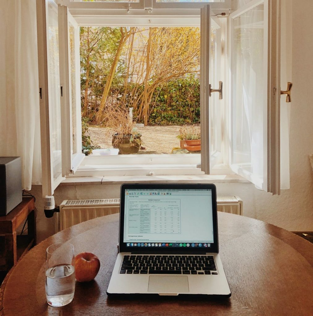 remote working by a window